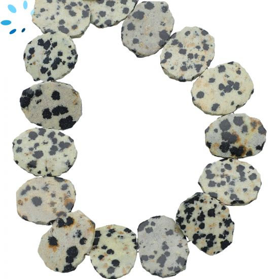 Dalmatian Jasper Coin Drill Slice 15x12 - 16x12 mm
