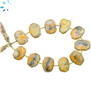 Bumblebee Jasper Coin Drill Slice Gold Electroplated 16x12 - 17x13mm