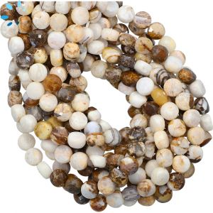 Petrified Wood Agate Faceted Coin Beads 6mm